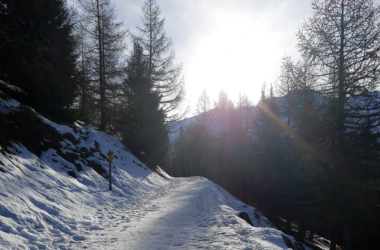 A Winter's Tale…