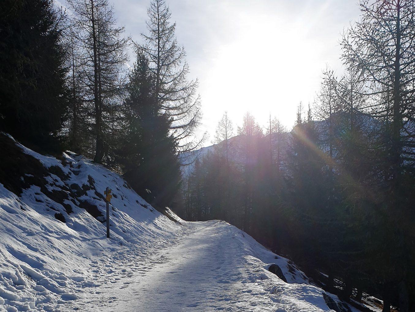 A Winter's Tale...